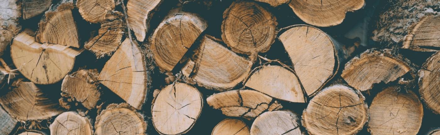Journée des forêts Teragir à La Courbe